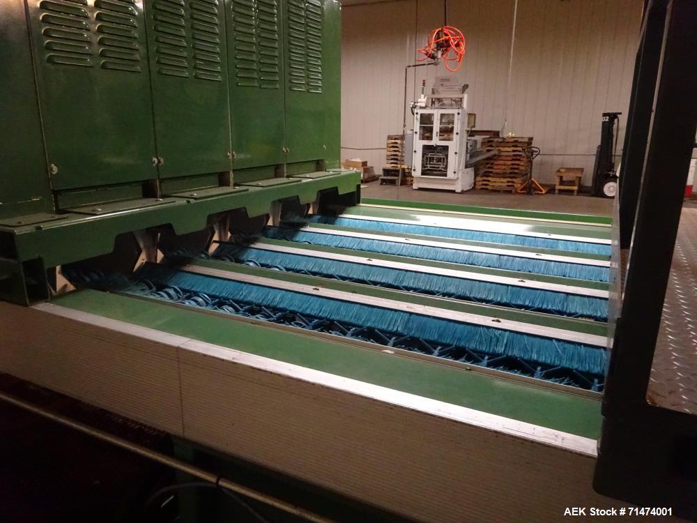 Used- Durand-Wayland Fruit Sizing, Polishing and Bag Packaging Line