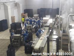 Used- Chicken Feet Processing Line