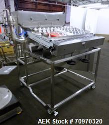 Used-M.W. TECHNOLOGIES, INC. Tablet Inspection Model RS200-12  S/N 20082-2